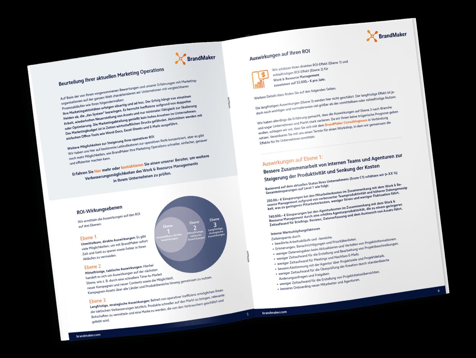Roi Report Marketing Deutsche PDF