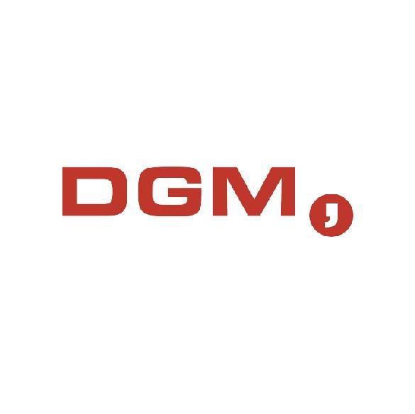 brandmaker partners dgm