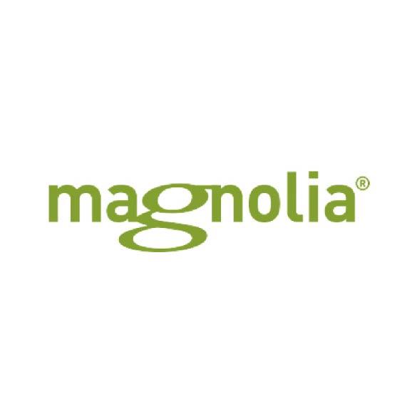 brandmaker partners magnolia