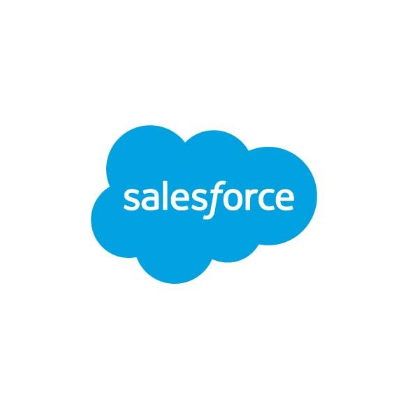 brandmaker partners salesforce